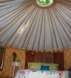 Woodside Spa & Glamping