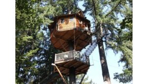 OutnAbout Treehouse Treesort, Oregon