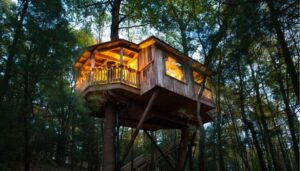 The Mohicans Treehouse Resort