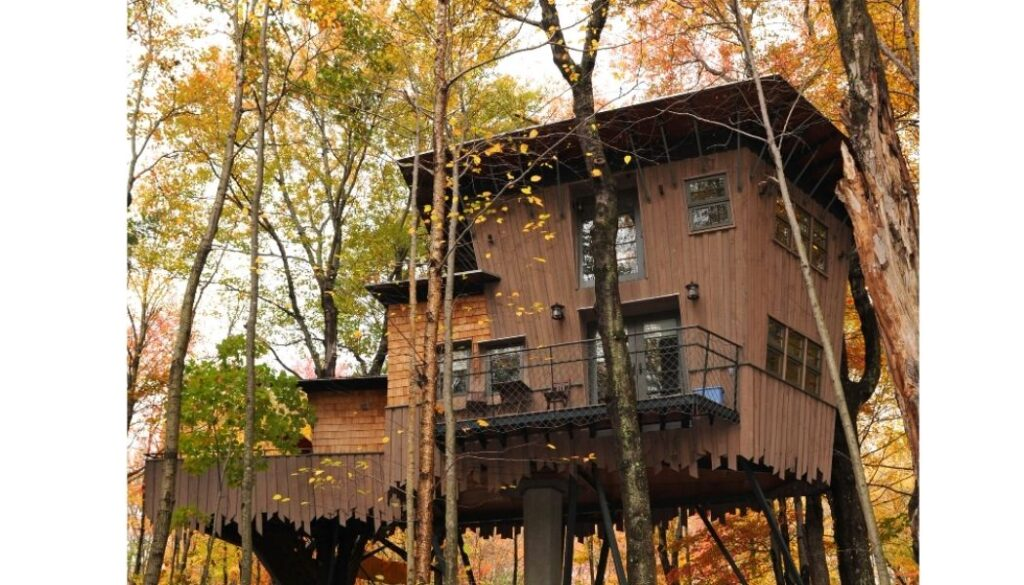 Glamping in a treehouse at Winvian Farm