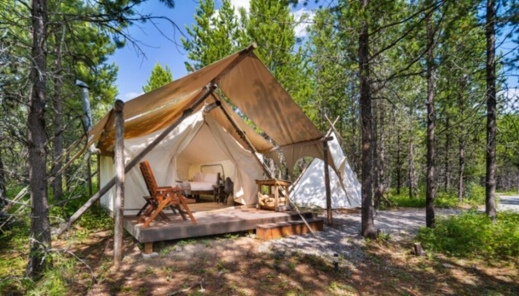 Glamping amongst the trees at Under Canvas, Glacier